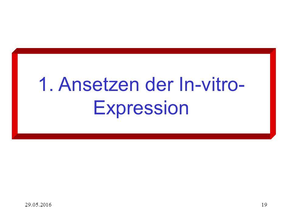 29.05.201619 1. Ansetzen der In-vitro- Expression