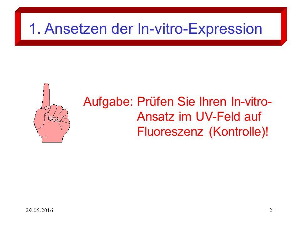 29.05.201621 Aufgabe: Prüfen Sie Ihren In-vitro- Ansatz im UV-Feld auf Fluoreszenz (Kontrolle)! 1. Ansetzen der In-vitro-Expression