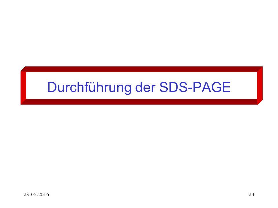 29.05.201624 Durchführung der SDS-PAGE