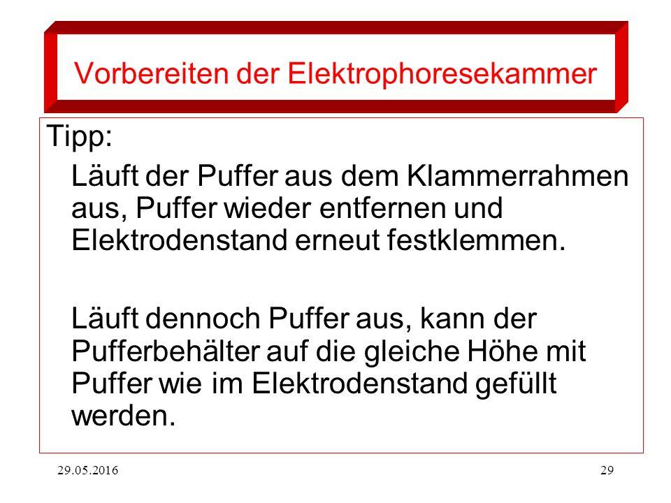 29.05.201629 Vorbereiten der Elektrophoresekammer Tipp: Läuft der Puffer aus dem Klammerrahmen aus, Puffer wieder entfernen und Elektrodenstand erneut