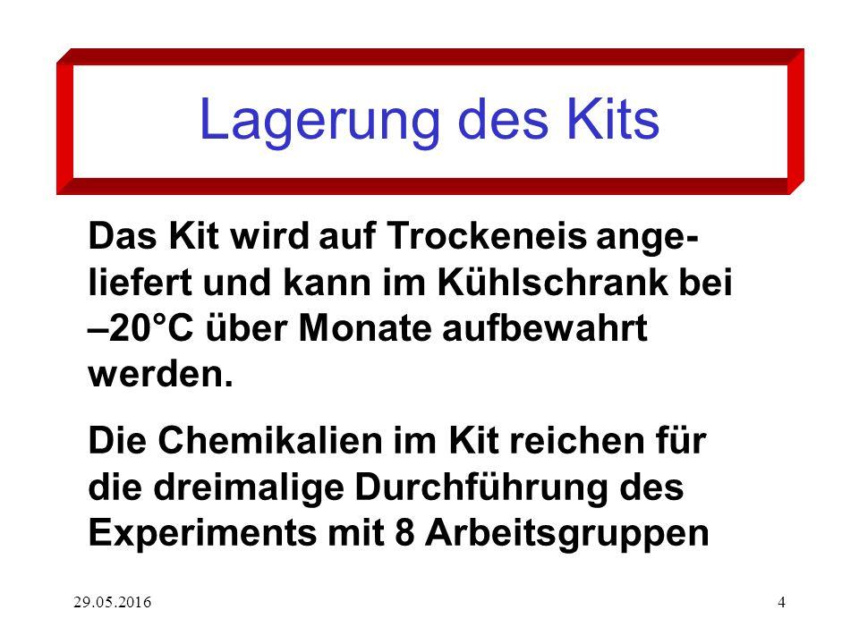 29.05.20164 Lagerung des Kits Das Kit wird auf Trockeneis ange- liefert und kann im Kühlschrank bei –20°C über Monate aufbewahrt werden. Die Chemikali