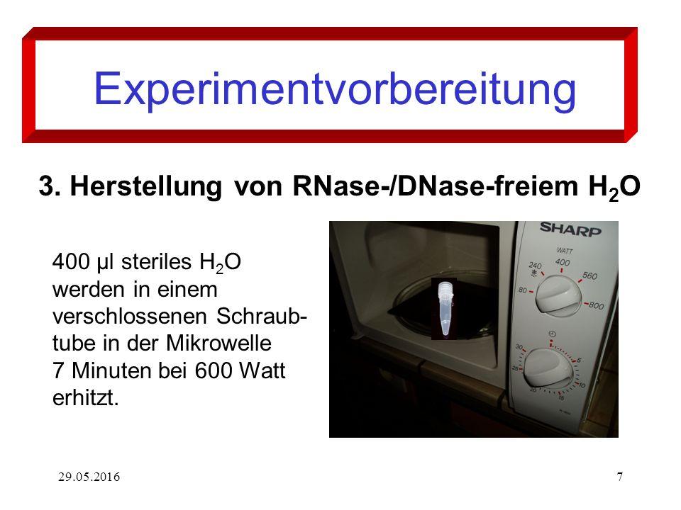 29.05.20167 Experimentvorbereitung 3. Herstellung von RNase-/DNase-freiem H 2 O 400 µl steriles H 2 O werden in einem verschlossenen Schraub- tube in