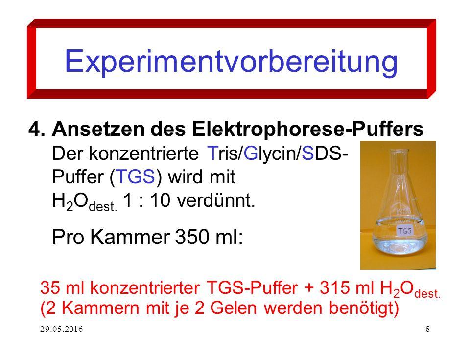 29.05.20168 Experimentvorbereitung 4.Ansetzen des Elektrophorese-Puffers Der konzentrierte Tris/Glycin/SDS- Puffer (TGS) wird mit H 2 O dest. 1 : 10 v