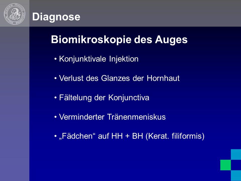 """Biomikroskopie des Auges Diagnose Konjunktivale Injektion Verlust des Glanzes der Hornhaut Fältelung der Konjunctiva Verminderter Tränenmeniskus """"Fädchen auf HH + BH (Kerat."""