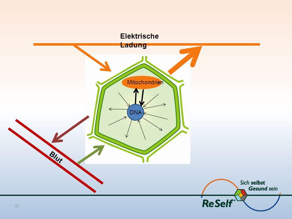 32 Blut Elektrische Ladung DNA Mitochondrien