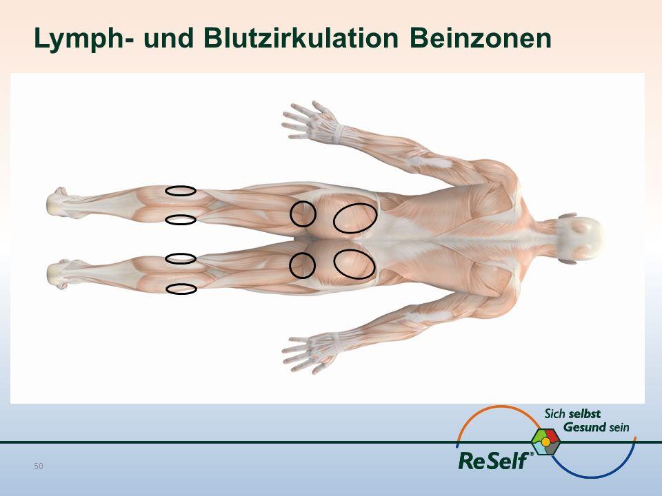 Lymph- und Blutzirkulation Beinzonen 50