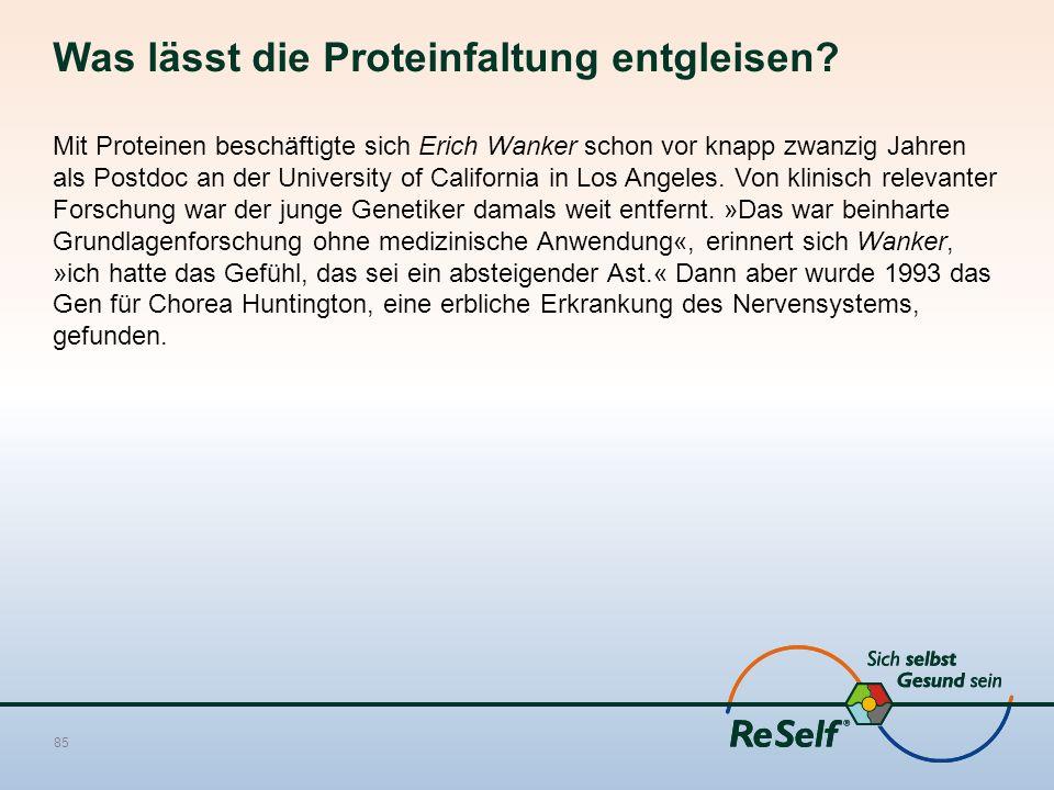 Was lässt die Proteinfaltung entgleisen? Mit Proteinen beschäftigte sich Erich Wanker schon vor knapp zwanzig Jahren als Postdoc an der University of
