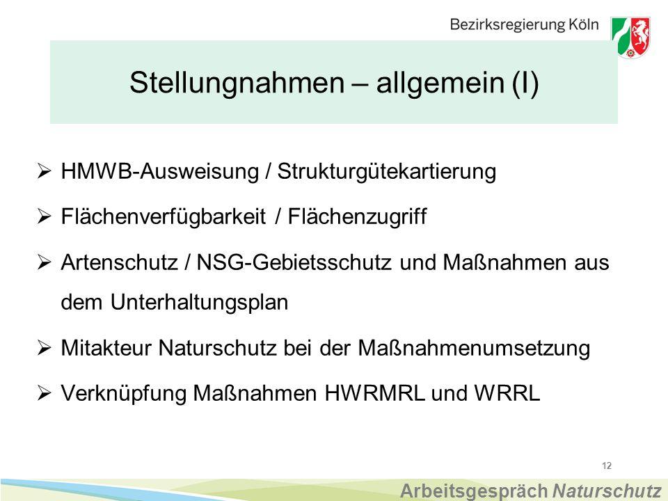 Stellungnahmen – allgemein (I)  HMWB-Ausweisung / Strukturgütekartierung  Flächenverfügbarkeit / Flächenzugriff  Artenschutz / NSG-Gebietsschutz und Maßnahmen aus dem Unterhaltungsplan  Mitakteur Naturschutz bei der Maßnahmenumsetzung  Verknüpfung Maßnahmen HWRMRL und WRRL 12 Arbeitsgespräch Naturschutz