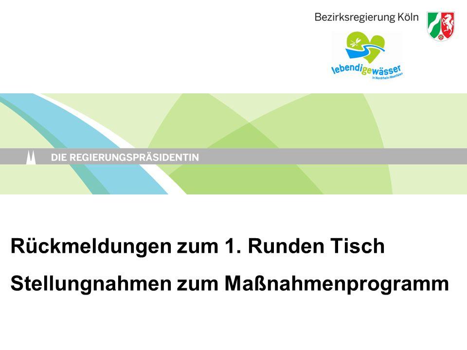 Rückmeldungen zum 1. Runden Tisch Stellungnahmen zum Maßnahmenprogramm