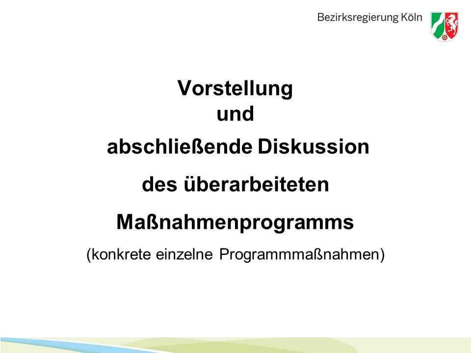 Vorstellung und abschließende Diskussion des überarbeiteten Maßnahmenprogramms (konkrete einzelne Programmmaßnahmen)