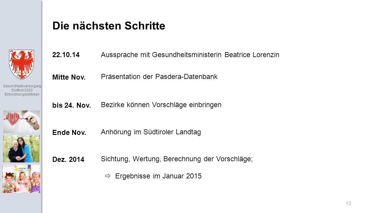 Gesundheitsversorgung Südtirol 2020 Entwicklungsleitlinien 13 Die nächsten Schritte Präsentation der Pasdera-Datenbank Mitte Nov.