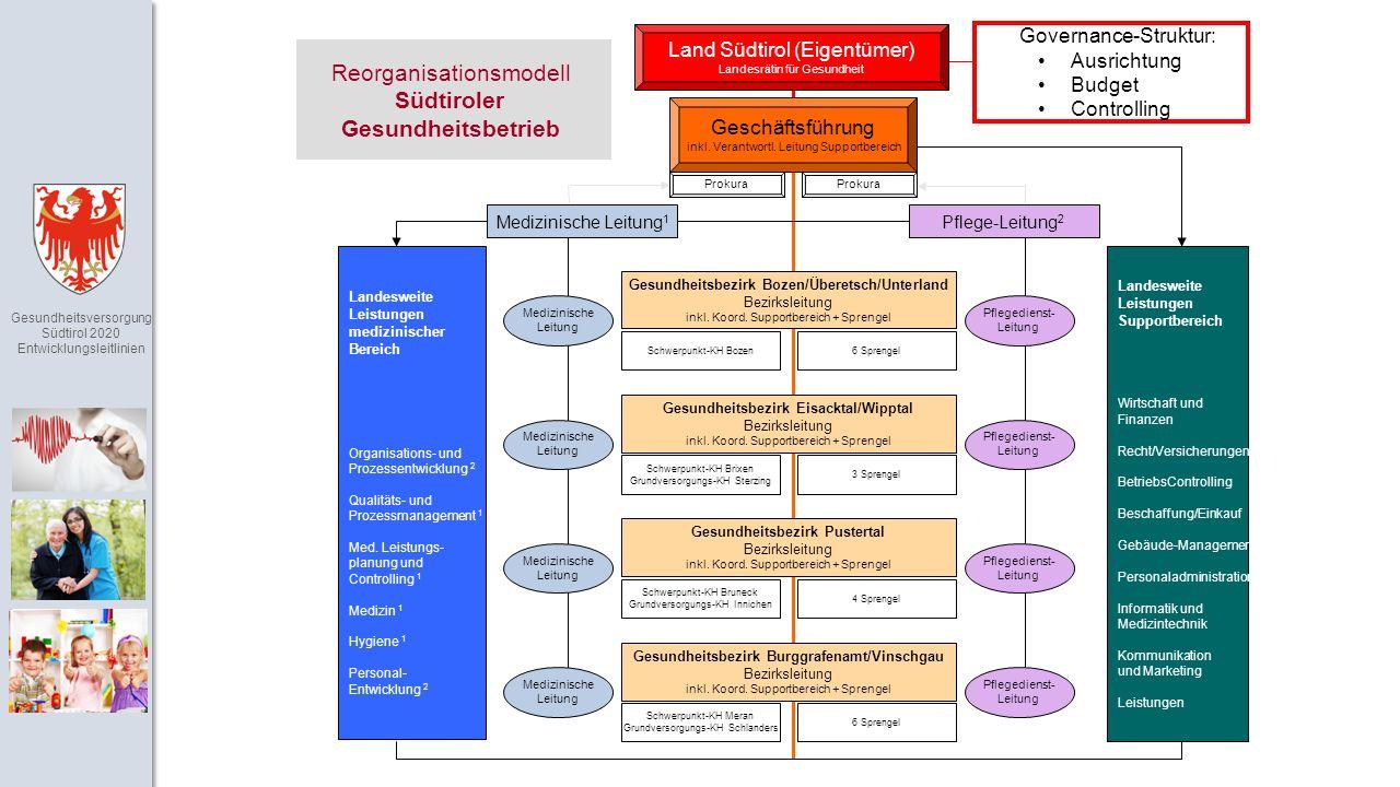 Gesundheitsversorgung Südtirol 2020 Entwicklungsleitlinien Geschäftsführung inkl.