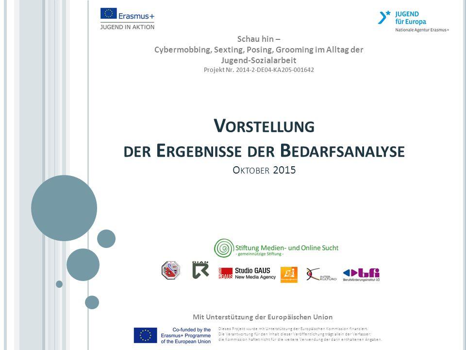 D AS K ONSORTIUM P1 Stiftung Medien- und Online Sucht (SMOS) - gemeinnützige Stiftung - P2 Fundatia romano-germana (FRG Timisoara) P3 K MILIOS AND SIA OE (DIAN) P4 Studio GAUS GmbH P5 Edukácia@Internet (E@I) P6 Inter-kulturo, d.o.o P7 Berufsförderungsinstitut Oberösterreich (BFI OOE) 2