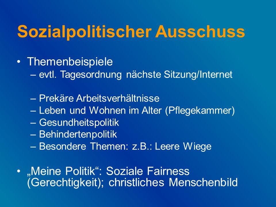 Sozialpolitischer Ausschuss Themenbeispiele –evtl.