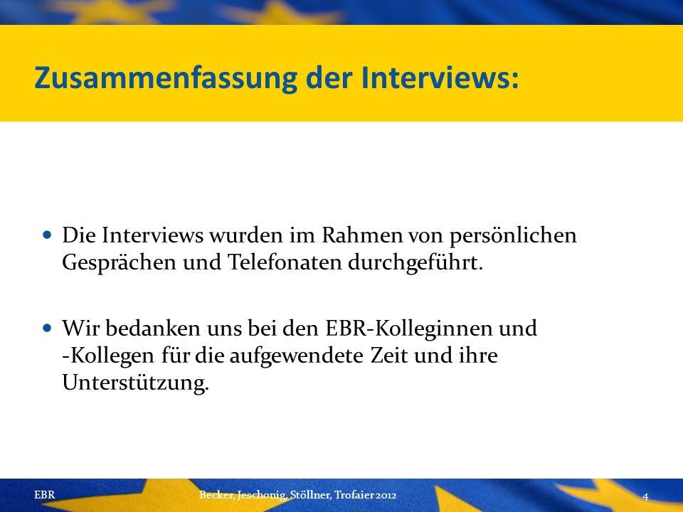 Zusammenfassung der Interviews: Die Interviews wurden im Rahmen von persönlichen Gesprächen und Telefonaten durchgeführt.