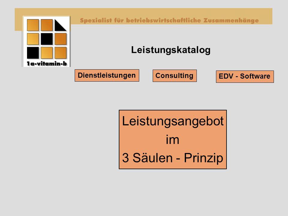 Leistungskatalog Dienstleistungen EDV - Software Consulting Leistungsangebot im 3 Säulen - Prinzip