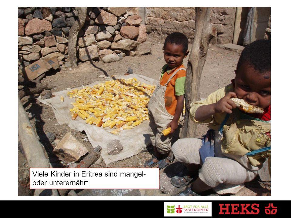 Viele Kinder in Eritrea sind mangel- oder unterernährt