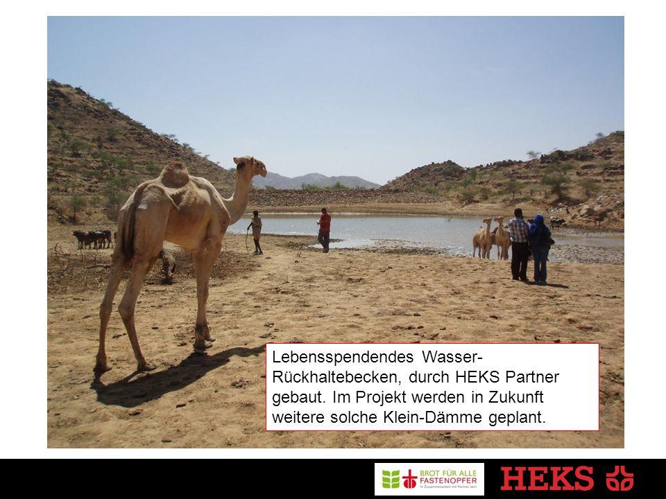 Lebensspendendes Wasser- Rückhaltebecken, durch HEKS Partner gebaut.