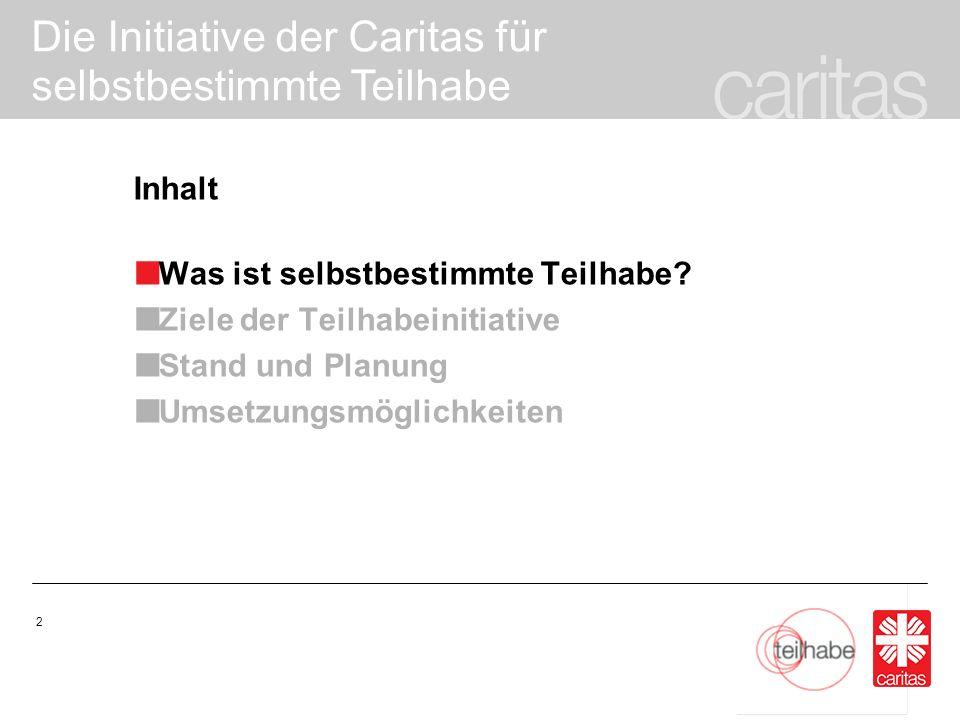 Die Initiative der Caritas für selbstbestimmte Teilhabe 13 Kampagne und Initiative: Kampagne der Caritas beleuchtet ein Jahr lang eine Zielgruppe 2009 Menschen am Rande 2010 Menschen im Alter 2011 Menschen mit Behinderung Teilhabeinitiative: drei Jahre, fachbereichsübergreifend und stärker nach Innen gerichtet – d.h.