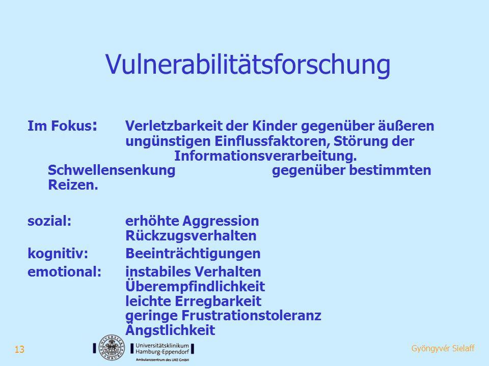 13 Gyöngyvér Sielaff Vulnerabilitätsforschung Im Fokus : Verletzbarkeit der Kinder gegenüber äußeren ungünstigen Einflussfaktoren, Störung der Informationsverarbeitung.