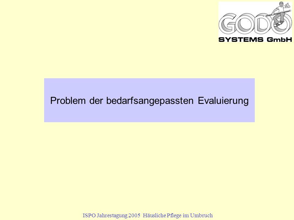 Problem der bedarfsangepassten Evaluierung