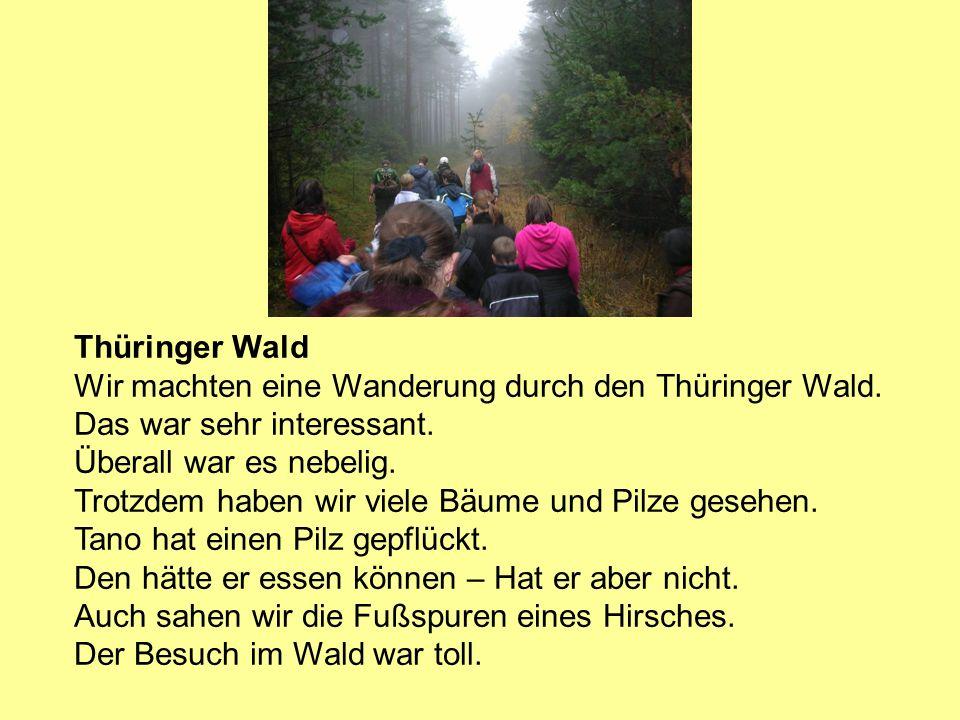 Thüringer Wald Wir machten eine Wanderung durch den Thüringer Wald. Das war sehr interessant. Überall war es nebelig. Trotzdem haben wir viele Bäume u
