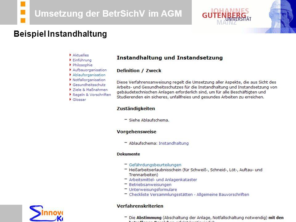 n Beratung n Betreuung n Koordinierung Umsetzung der BetrSichV im AGM Beispiel Instandhaltung