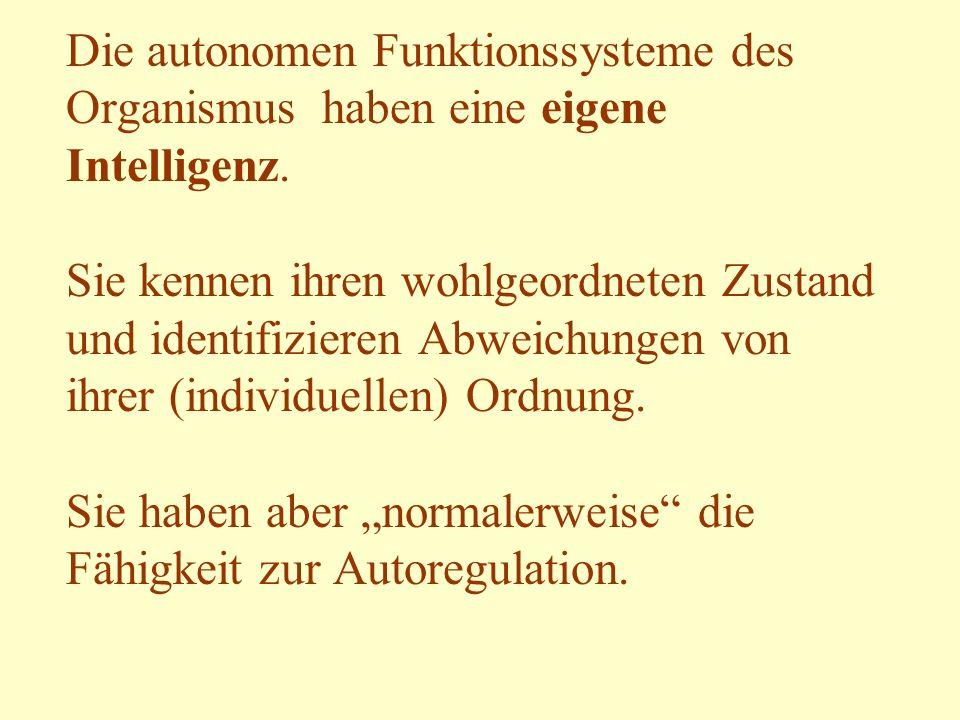 Die autonomen Funktionssysteme des Organismus haben eine eigene Intelligenz.