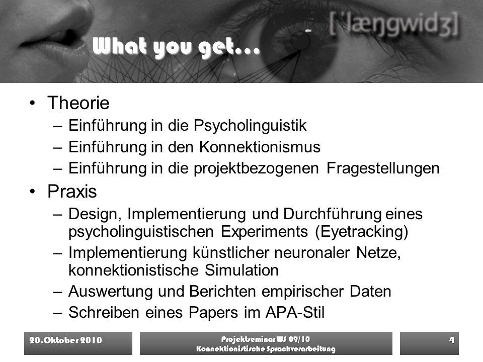 What you get… Theorie –Einführung in die Psycholinguistik –Einführung in den Konnektionismus –Einführung in die projektbezogenen Fragestellungen Praxi