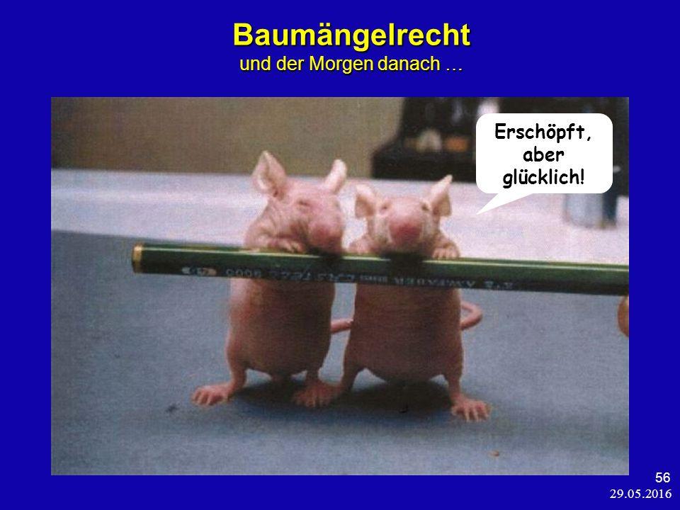 29.05.2016 56 Baumängelrecht und der Morgen danach … Erschöpft, aber glücklich!
