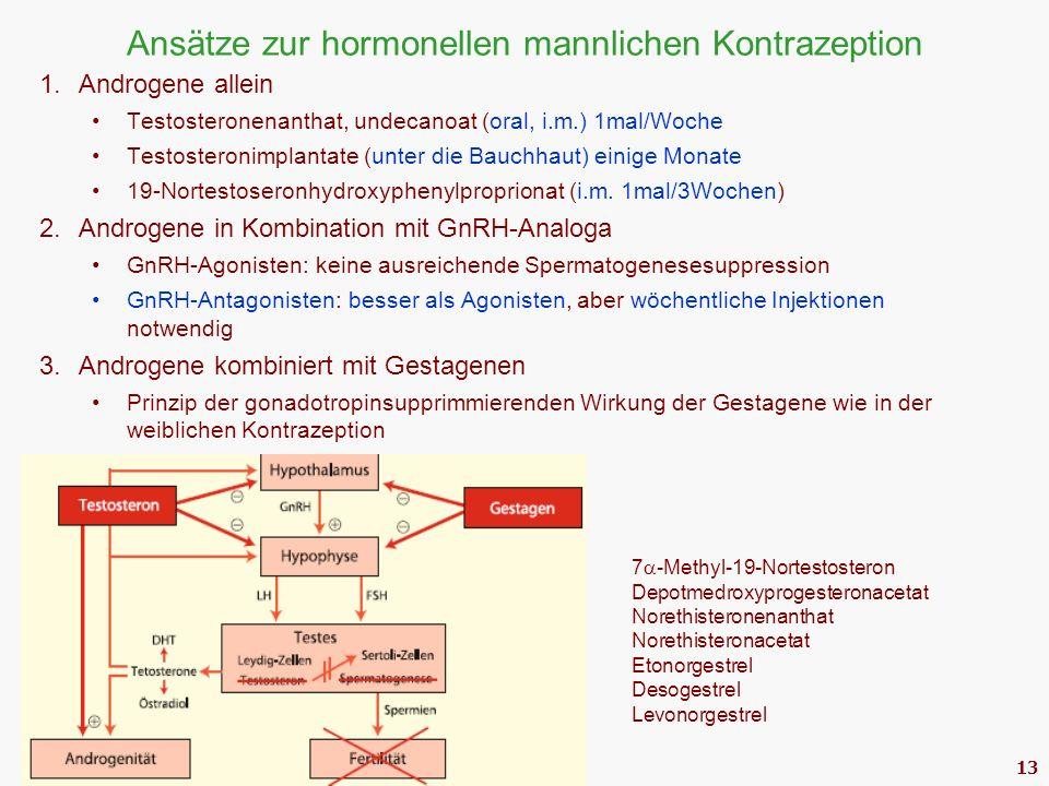 13 Ansätze zur hormonellen mannlichen Kontrazeption 1.Androgene allein Testosteronenanthat, undecanoat (oral, i.m.) 1mal/Woche Testosteronimplantate (unter die Bauchhaut) einige Monate 19-Nortestoseronhydroxyphenylproprionat (i.m.