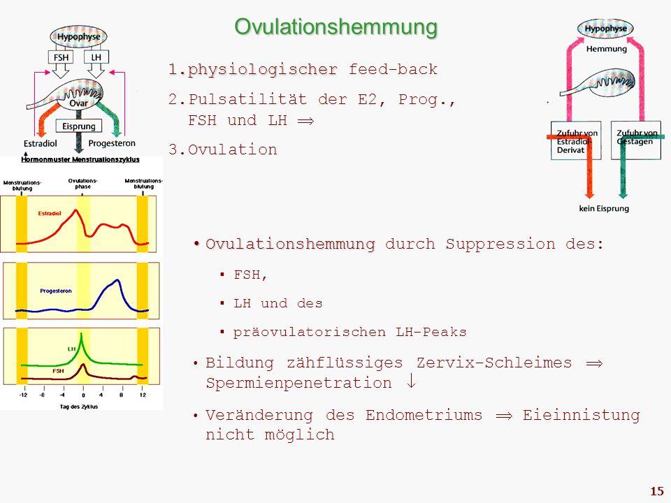 15 Ovulationshemmung Ovulationshemmung Ovulationshemmung durch Suppression des:  FSH,  LH und des  präovulatorischen LH-Peaks Bildung zähflüssiges Zervix-Schleimes  Spermienpenetration  Veränderung des Endometriums  Eieinnistung nicht möglich 1.