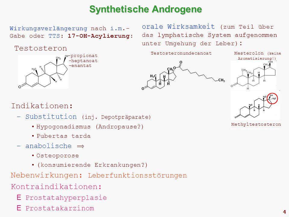 4 Synthetische Androgene Wirkungsverlängerung Wirkungsverlängerung nach i.m.- Gabe oder TTS: 17-OH-Acylierung: Testosteron -propionat -heptanoat -enantat orale Wirksamkeit lymphatische System aufgenommen orale Wirksamkeit (zum Teil über das lymphatische System aufgenommen unter Umgehung der Leber) : Testosteronundecanoat Mesterolon (keine Aromatisierung!) Indikationen: –Substitution (inj.