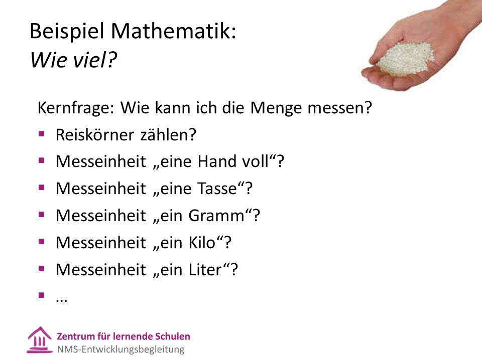 Beispiel Mathematik: Wie viel. Kernfrage: Wie kann ich die Menge messen.