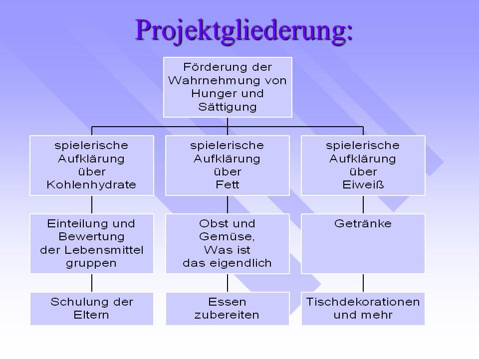 Projektgliederung: