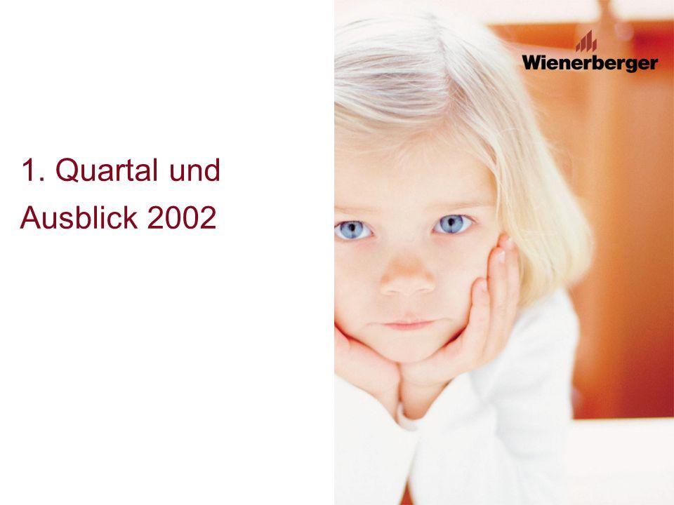 1. Quartal und Ausblick 2002