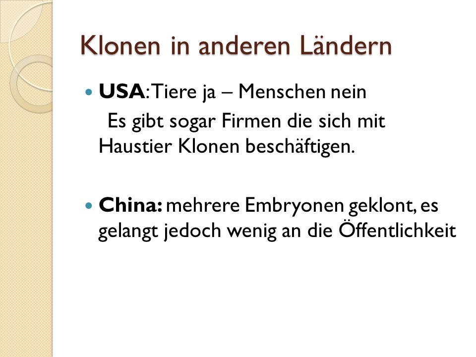 Umfragebogen: