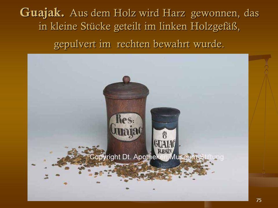 75 Guajak. Aus dem Holz wird Harz gewonnen, das in kleine Stücke geteilt im linken Holzgefäß, gepulvert im rechten bewahrt wurde.