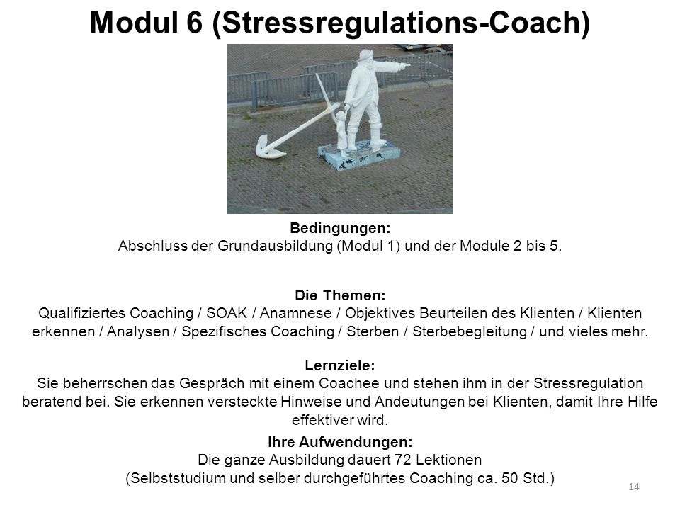 Modul 6 (Stressregulations-Coach) Die Themen: Qualifiziertes Coaching / SOAK / Anamnese / Objektives Beurteilen des Klienten / Klienten erkennen / Ana