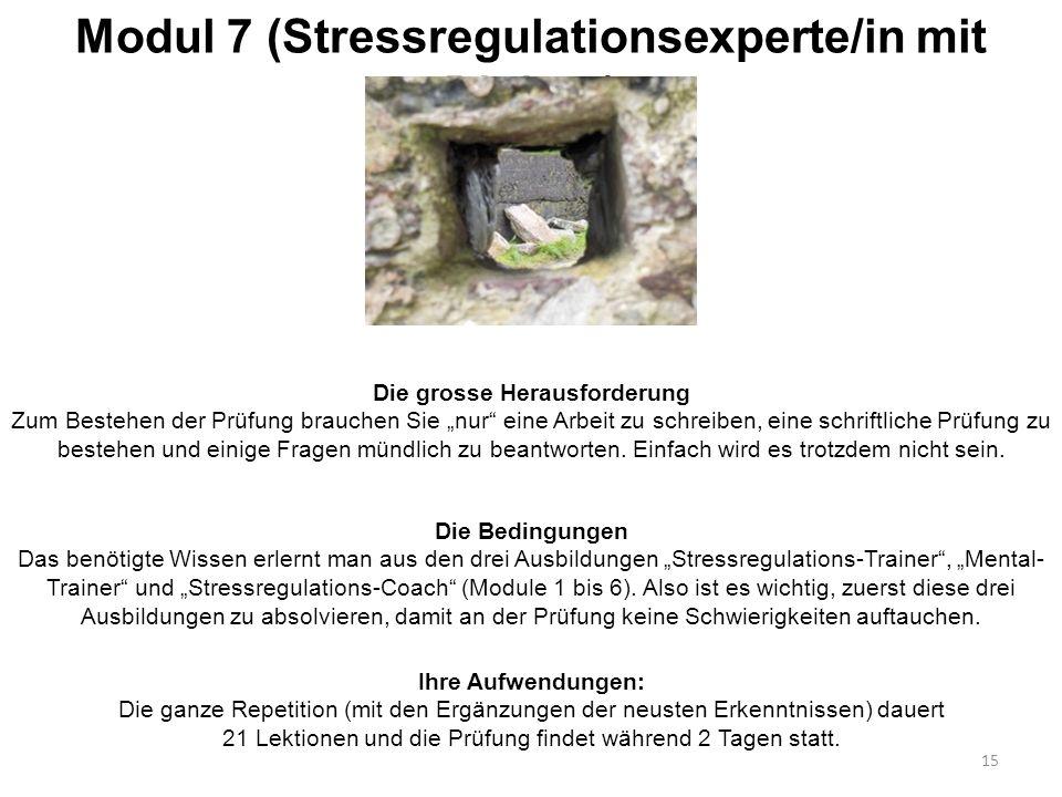 """Modul 7 (Stressregulationsexperte/in mit Diplom) Die grosse Herausforderung Zum Bestehen der Prüfung brauchen Sie """"nur"""" eine Arbeit zu schreiben, eine"""