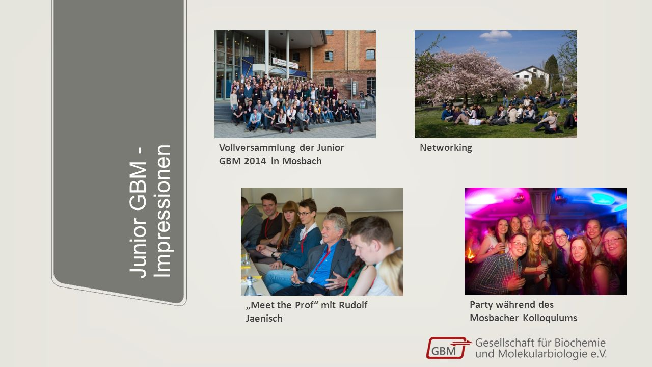 """Junior GBM - Impressionen Vollversammlung der Junior GBM 2014 in Mosbach """"Meet the Prof mit Rudolf Jaenisch Party während des Mosbacher Kolloquiums Networking"""