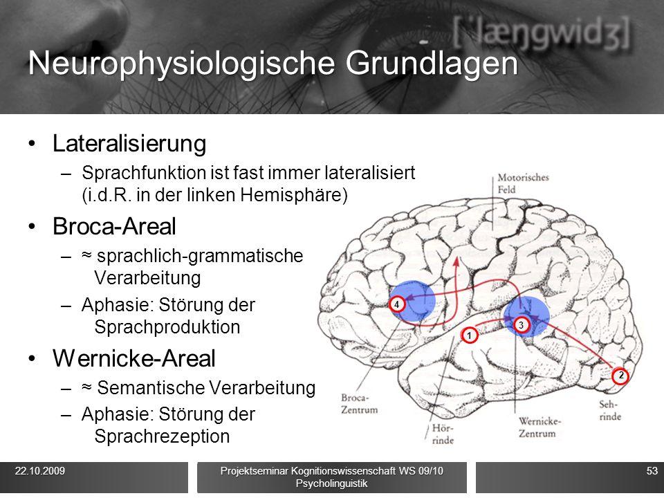 Neurophysiologische Grundlagen Lateralisierung –Sprachfunktion ist fast immer lateralisiert (i.d.R. in der linken Hemisphäre) Broca-Areal –≈ sprachlic