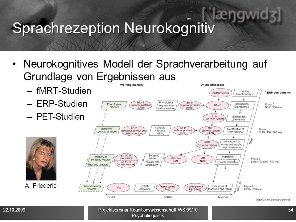 Sprachrezeption Neurokognitiv Neurokognitives Modell der Sprachverarbeitung auf Grundlage von Ergebnissen aus –fMRT-Studien –ERP-Studien –PET-Studien