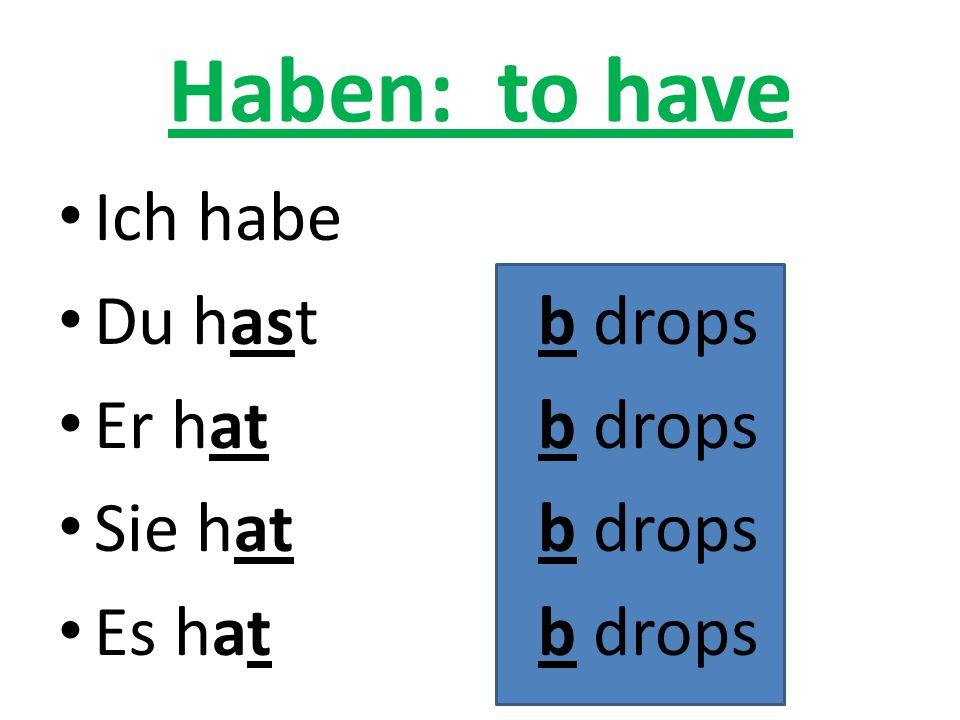 Haben: to have Ich habe Du hastb drops Er hatb drops Sie hatb drops Es hatb drops