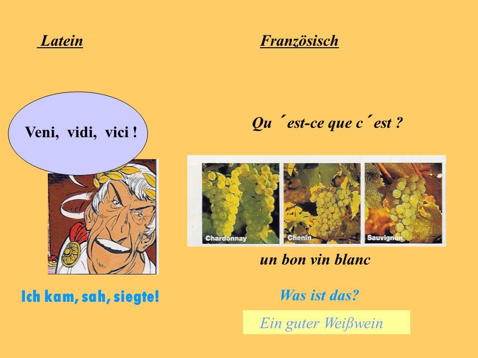 Latein - im Vordergrund steht die Arbeit mit und an lateinischen Texten Französisch - im Vordergrund steht der Umgang mit der französischen Sprache (m