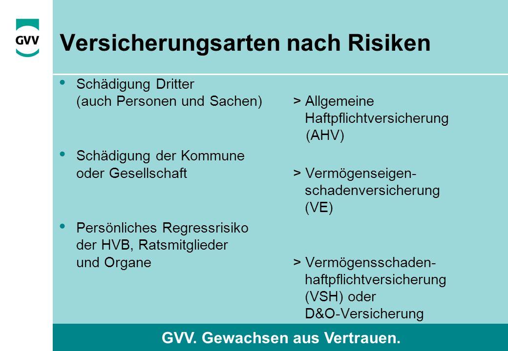 GVV. Gewachsen aus Vertrauen. Versicherungsarten nach Risiken Schädigung Dritter (auch Personen und Sachen) > Allgemeine Haftpflichtversicherung (AHV)