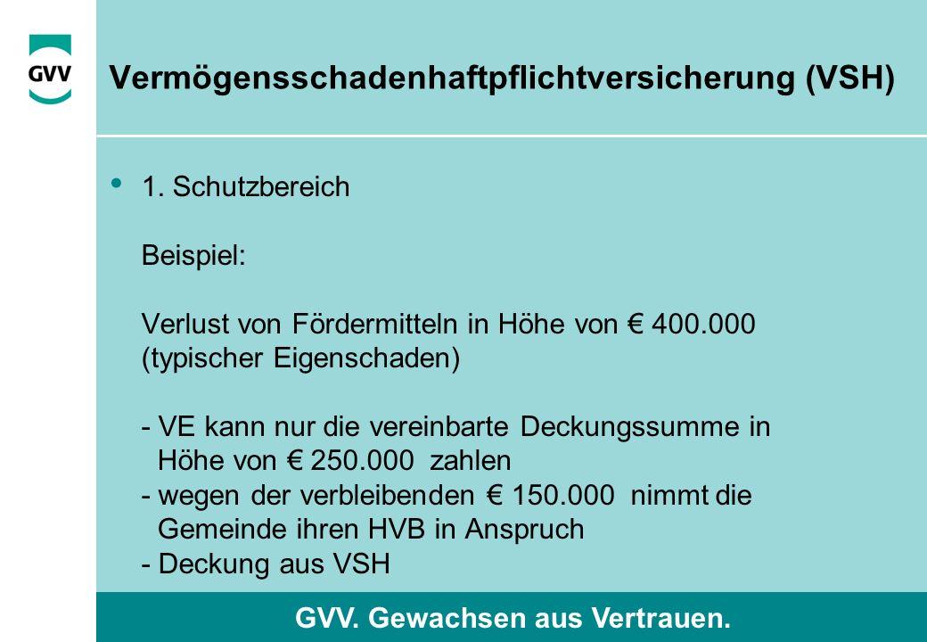 GVV. Gewachsen aus Vertrauen. 1. Schutzbereich Beispiel: Verlust von Fördermitteln in Höhe von € 400.000 (typischer Eigenschaden) - VE kann nur die ve