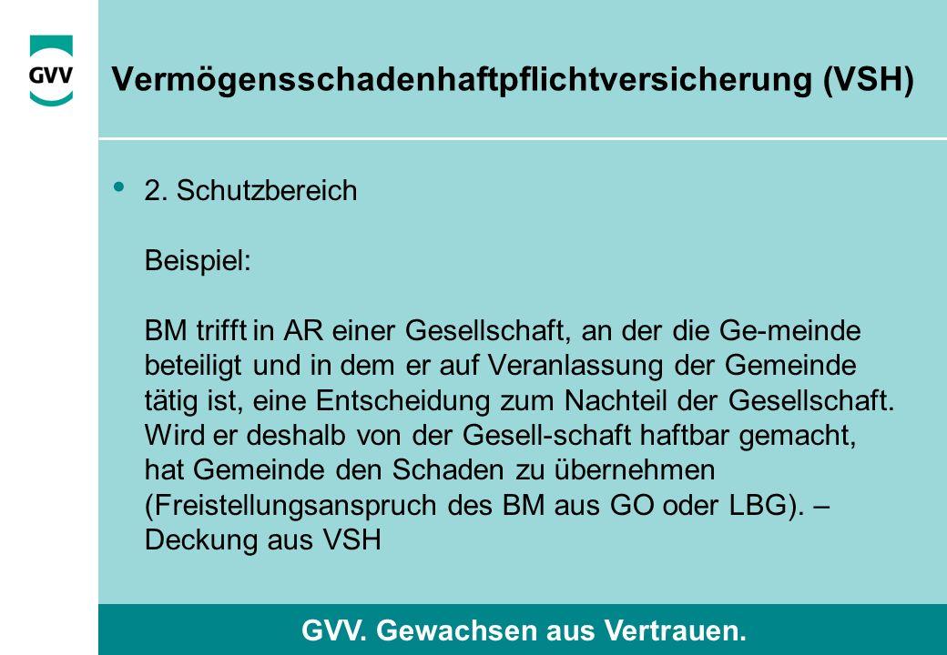 GVV. Gewachsen aus Vertrauen. Vermögensschadenhaftpflichtversicherung (VSH) 2.