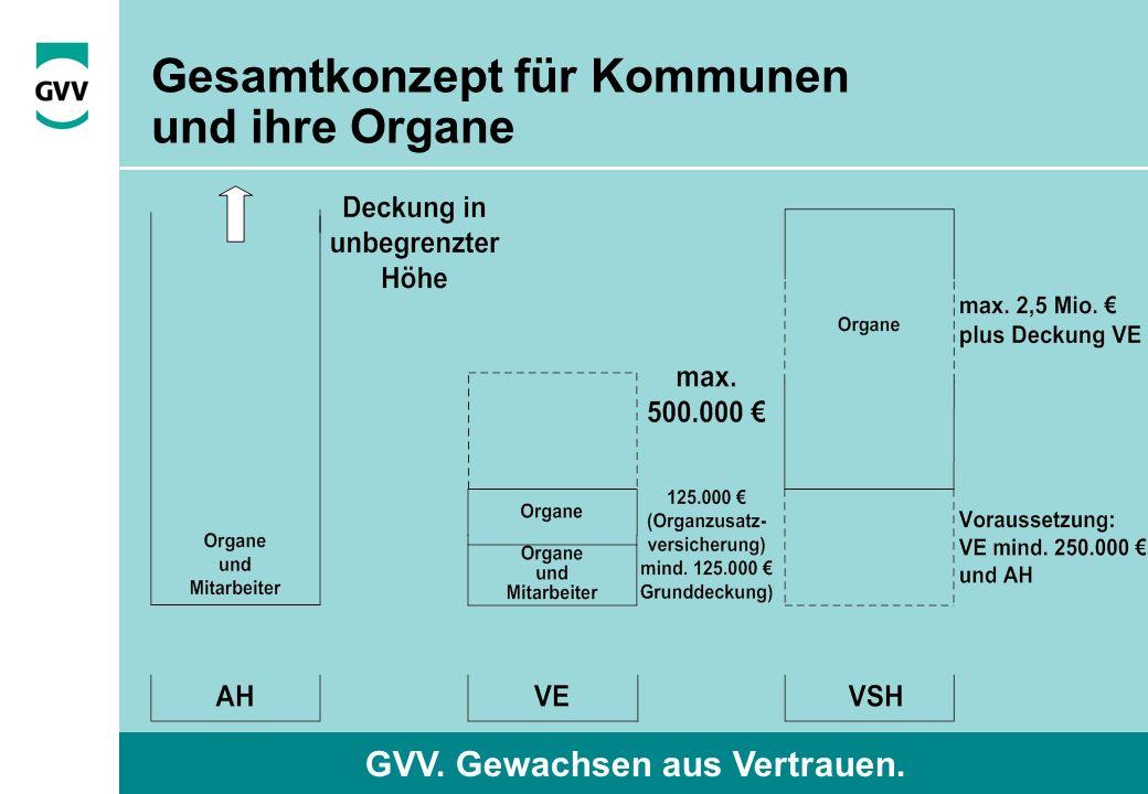GVV. Gewachsen aus Vertrauen. Gesamtkonzept für Kommunen und ihre Organe
