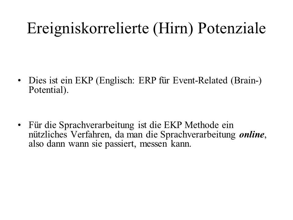 Ereigniskorrelierte (Hirn) Potenziale Dies ist ein EKP (Englisch: ERP für Event-Related (Brain-) Potential). Für die Sprachverarbeitung ist die EKP Me